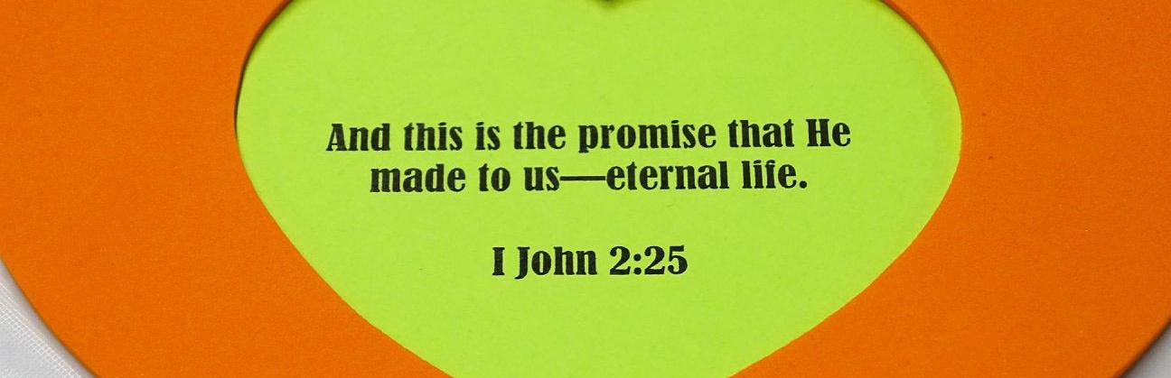 I John 2:25